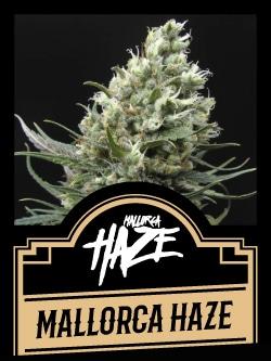 Mallorca Haze