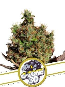 G-Zone30