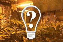 Stromkostenrechner – Cannabis indoor Anbau