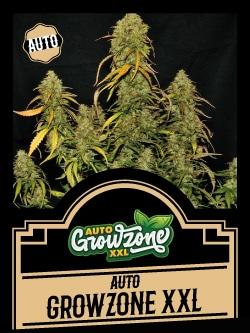 Autoflowering Seeds - Auto Growzone XXL