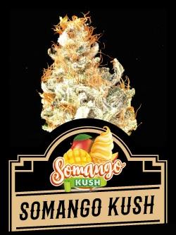 Somango Kush